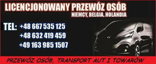 transport osob swiebodzin holandia