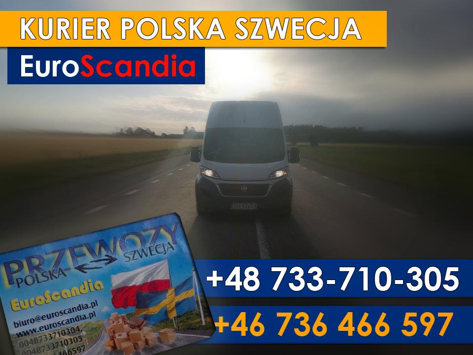 https://krajowytransport.pl/images/zdjd/EUROSCANDIA23.png