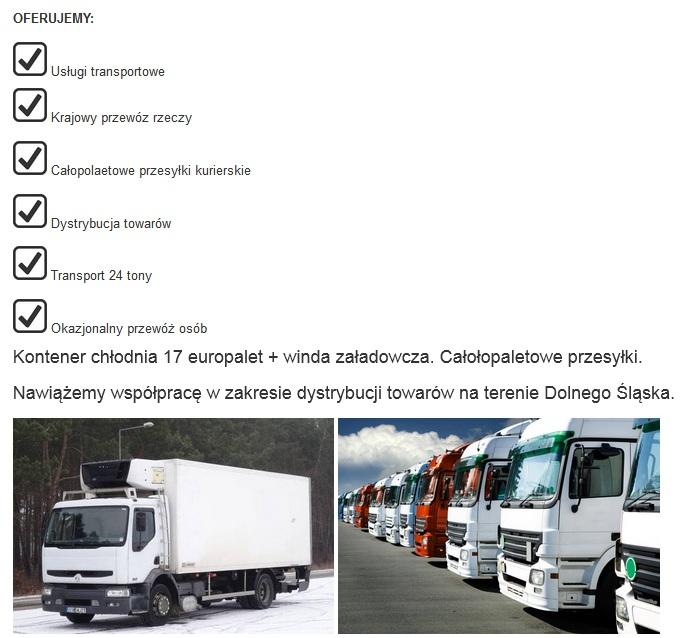 możliwości transportowe w Ząbkowicach Śląskich lista usług