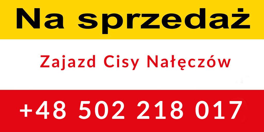 https://krajowytransport.pl/images/zdjd/cisy2.jpg