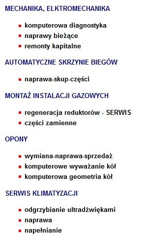 usługi oferowane w automatic serwis