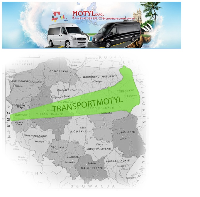 http://krajowytransport.pl/images/zdjd/t381.jpg