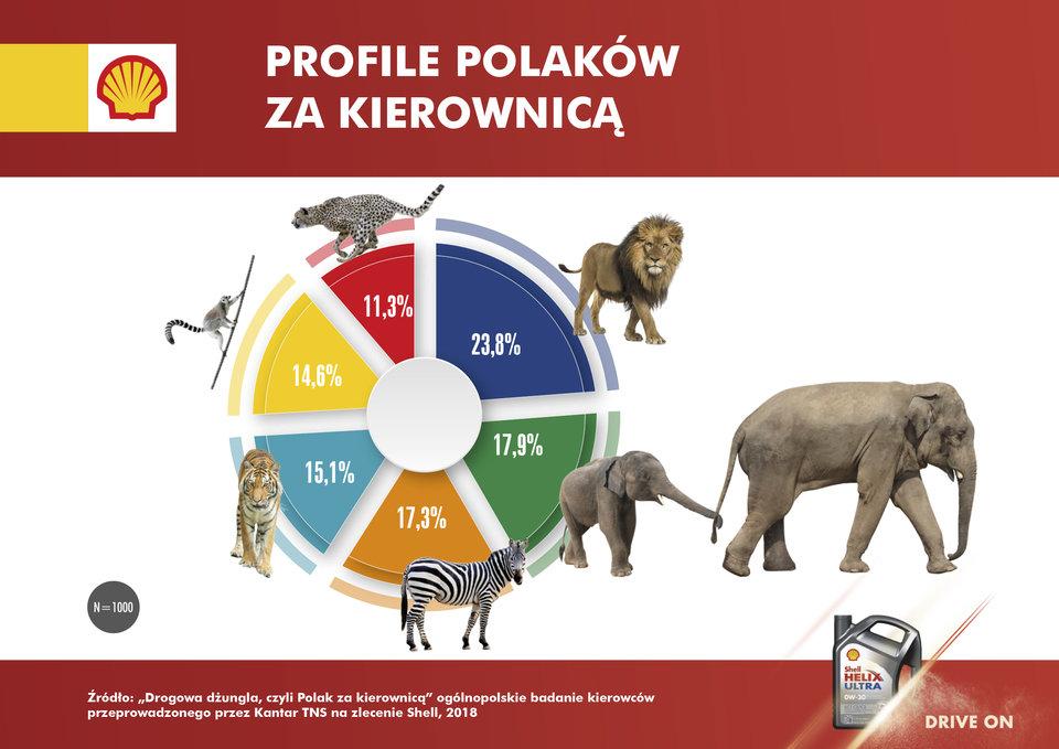 https://krajowytransport.pl/images/zdjd/zwierzeta.jpg